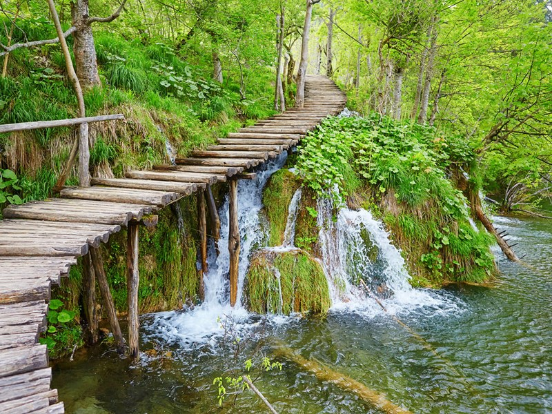 Plitvice walkway close up
