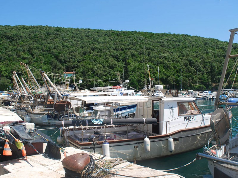 Fishing boats in the sheltered harbour at Krnica Luka